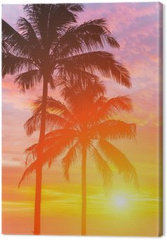 Two palm and beautiful sunset