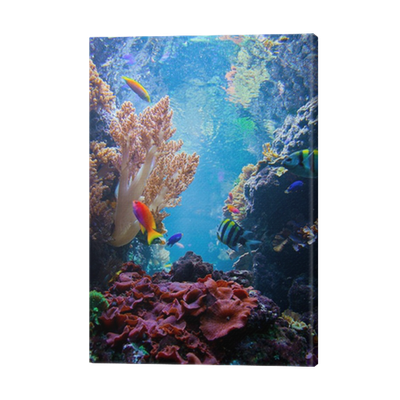 Underwater scene with fish, coral reef Canvas Print ...