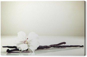 Canvas Print Vanilla Bean And Flower