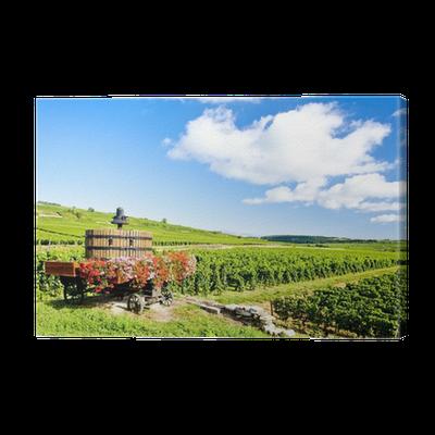 Vineyards of cote de beaune near pommard burgundy france canvas print pixers we live to - The splendid transformation of a vineyard in burgundy ...