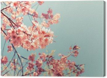 Canvas Print Vintage cherry blossom - sakura flower. nature background (retro filter effect color)