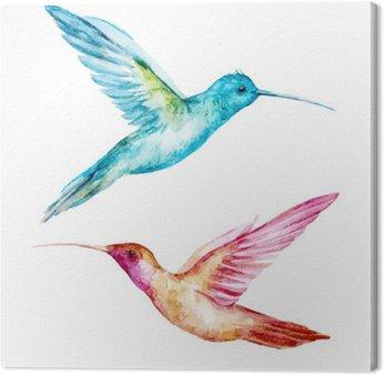 Canvas Print Watercolor colibri bird