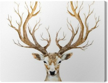 Watercolor hand drawn deer