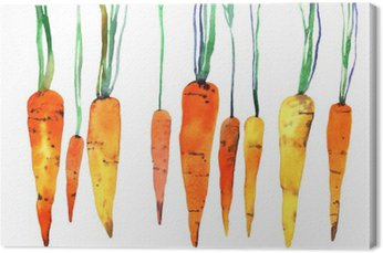 watercolor hand painted carrot Canvas Print