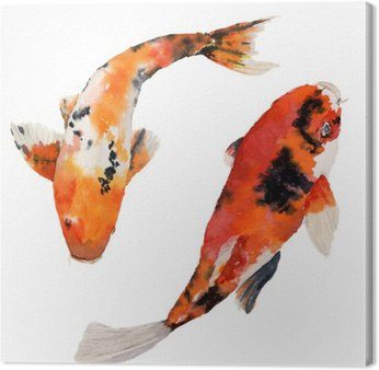 Canvas Print Watercolor oriental rainbow carp set. Koi fishes isolated on white background. Underwater illustration for design, background or fabric