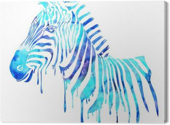 Watercolor zebra head - abstract animal illustration, white