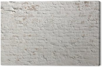 Canvas Print White grunge brick wall background