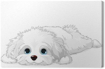Canvas Print White Puppy