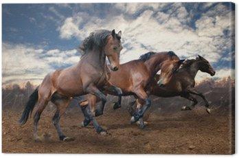 Canvas Print wild jump bay horses