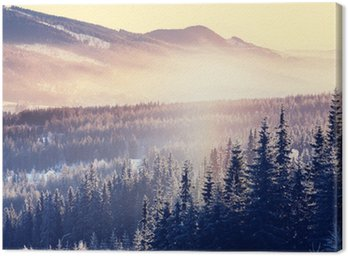 Canvas Print Winter mountains