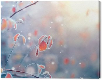 Winter nature background. Frozen branch with leaves closeup Canvas Print