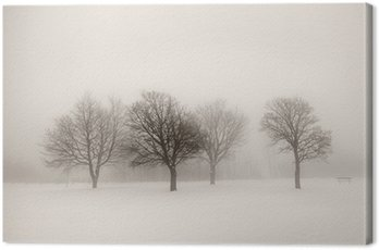 Canvas Print Winter trees in fog
