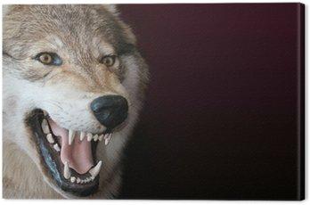 Canvas Print wolf