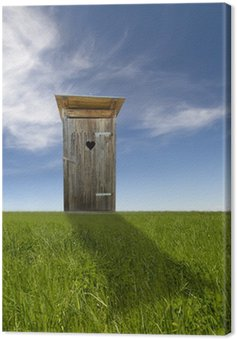 Canvas Print Wooden toilet, green field, blue sky