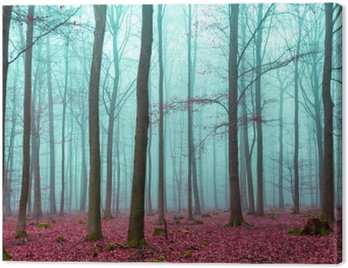 Canvas Print Zauber Wald in rot und türkis