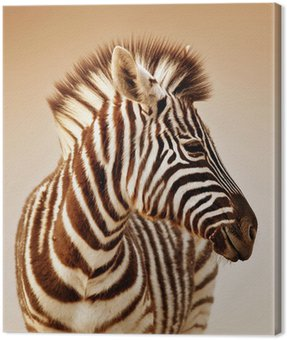 Canvas Print Zebra portrait
