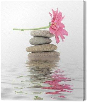 zen / spa stones with flowers
