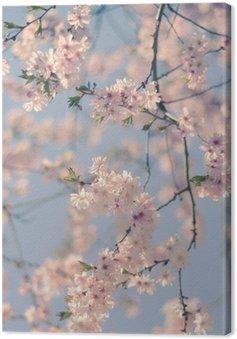 Canvas Retro Filter Cherry Blossom