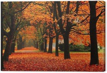 Canvas Rode herfst in het park