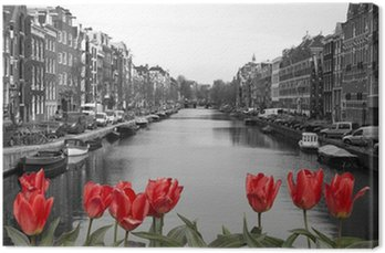 Canvas Rode tulpen in amsterdam