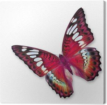 Canvas Rode vlinder