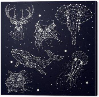 Canvas Set van constellatie, olifant, uil, herten, walvissen, kwallen, vos, ster, vector graphics