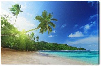 Canvas Strand bij zonsondergang tijd op Mahe eiland in de Seychellen