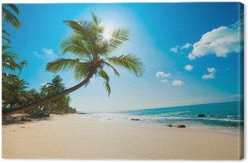 Canvas Tropisch strand in de zon