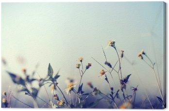 Canvas Uitstekende foto van de natuur achtergrond met wilde bloemen en planten