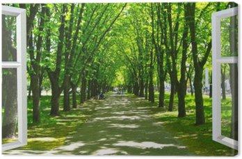 Canvas Venster geopend naar het prachtige park met veel groene bomen