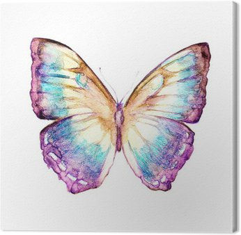 Canvas Vlindersontwerp