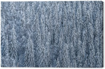 Canvas Winterwald