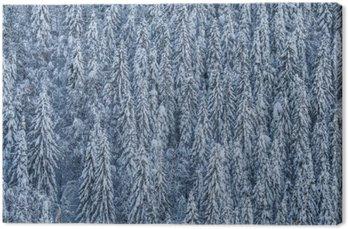 Canvas Winterwald