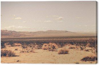 Canvas Zuidelijke woestijn van Californië