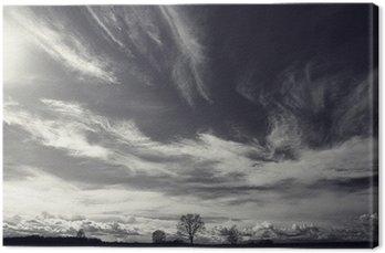 Canvas Zwart-wit foto herfstlandschap