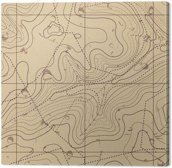 Canvastavla Abstrakt Retro Topography karta Bakgrund