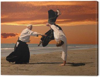 Canvastavla Aikido vid solnedgången