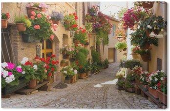 Canvastavla Alley med blommor, Spello