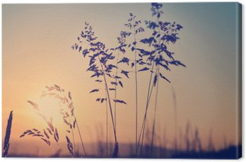 Canvastavla Ängen vid solnedgången, zen meditativ scen