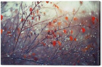 Canvastavla Bakgrund med grenar och regndroppar