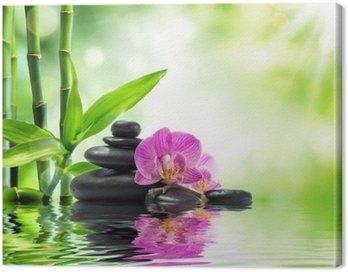 Canvastavla Bakgrund spa - orkidéer svarta stenar och bambu på vatten