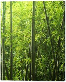 Canvastavla Bamboo skog