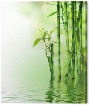Canvastavla Bambu stjälkar på vatten