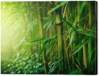 Canvastavla Bambu