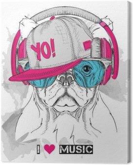 Canvastavla Bilden av hunden i glasen, hörlurar och i hip-hop hatt. Vektor illustration.