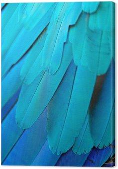 Canvastavla Blått och guld ara fjädrar