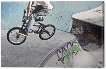 Canvastavla BMX im Skatepark