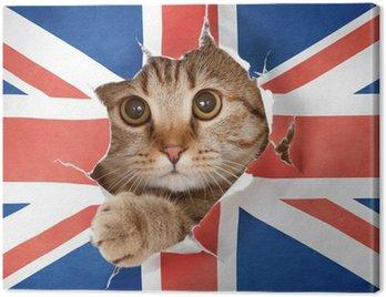 Canvastavla Brittisk katt tittar upp genom hålet i papper Storbritannien flagga