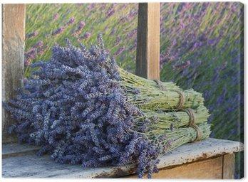 Canvastavla Buketter för lavendel på en gammal bänk