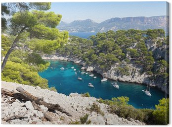 Canvastavla Calanques av Port Pin i Cassis